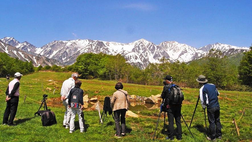 【春】5、6月にお勧め、リフトで登る絶景高原の「北尾根」散歩は乗り場まで車10分、絶景半日コース