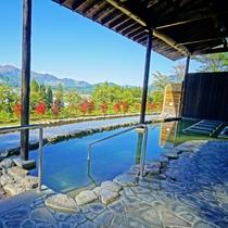 【新】わらび平の湯の露天風呂前に植えたドウダンツツジが真っ赤になって、独特な空気を作っていましたww