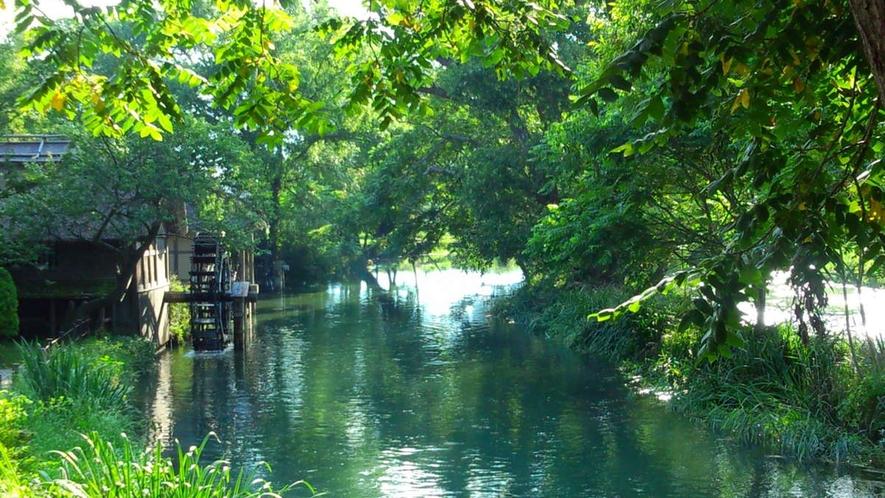 【夏】安曇野わさび園は無料で楽しめる。わさびソフトにコロッケにところてん(車60分見学60分程度)