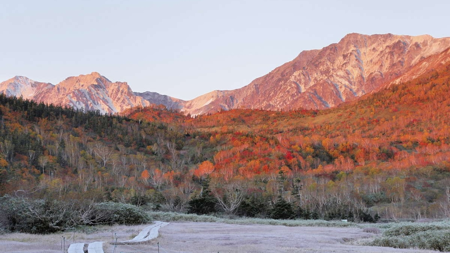 【秋】紅葉が終わっても美しい栂池自然園。10月末までの営業。(割引券有・ゴンドラまで車20分・路線バ