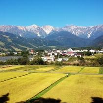 【秋】ホテル前天神坂から眺める黄金色の白馬村(徒歩2分)9月末以後10月なら初冠雪を