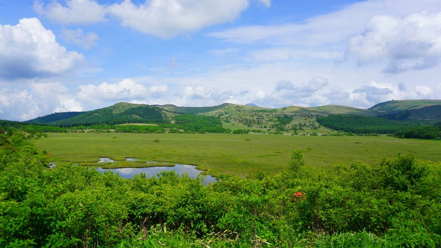【夏】美ケ原から八島湿原も道中の立ち寄りスポット。初夏から夏、そして秋がおすすめ(車2時間)