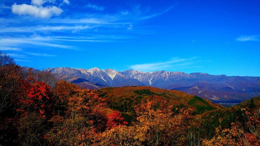 【秋】黄色に赤が入るのがいい!五竜のここの紅葉を見るなら10月10日頃。小遠見10月頭、園内10月中