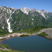 【夏】八方尾根を登ってみよう、八方池を目指して(ホテルから車10分)割引券あり