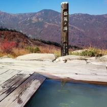 【秋】開放的な指数は日本一かも?雲上の秘湯、蓮華温泉露天風呂(ホテルから車65分)10月上旬
