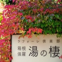 景観(秋)