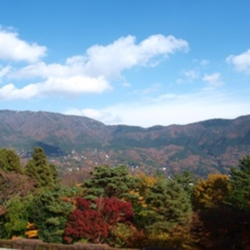 露天風呂付き客室景観(秋)