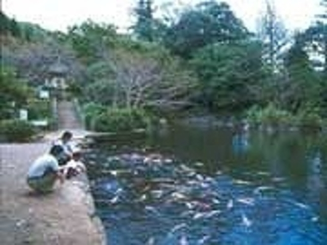 小野泉水公園