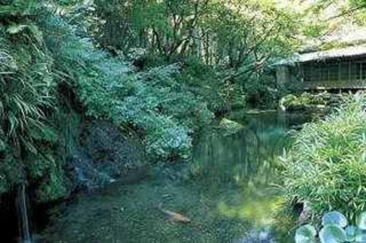 金峰山湧水群
