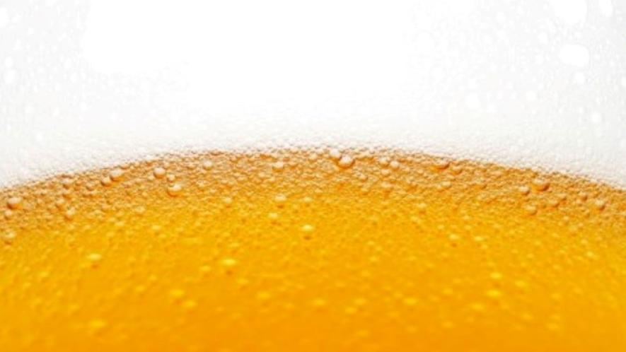 ビール・おつまみ付部屋飲みプラン♪