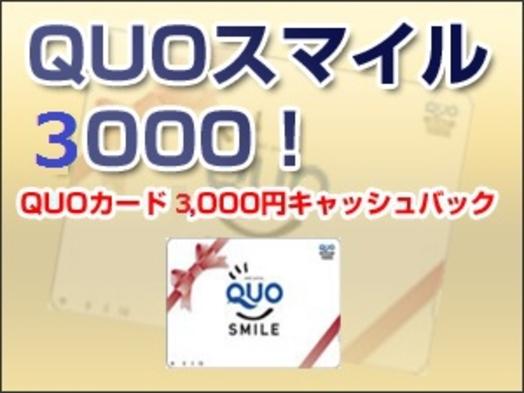 ※GoTo対象外【無料P30台完備!】QUO3,000円プラン☆