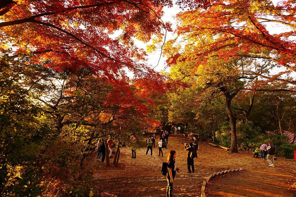 高尾山(2)