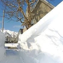 *当館周辺(冬)/冬になると、道の左右に大きな雪壁ができます。