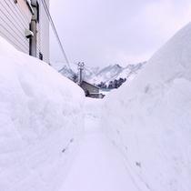 *12月より、宿周辺は一気に雪景色となります。1〜2月には数m降り積もることも!