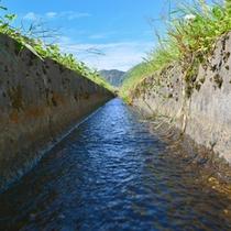 谷川連峰の清冽な源流水