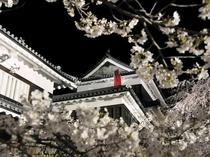 上田城千本桜祭り(ライトアップ)