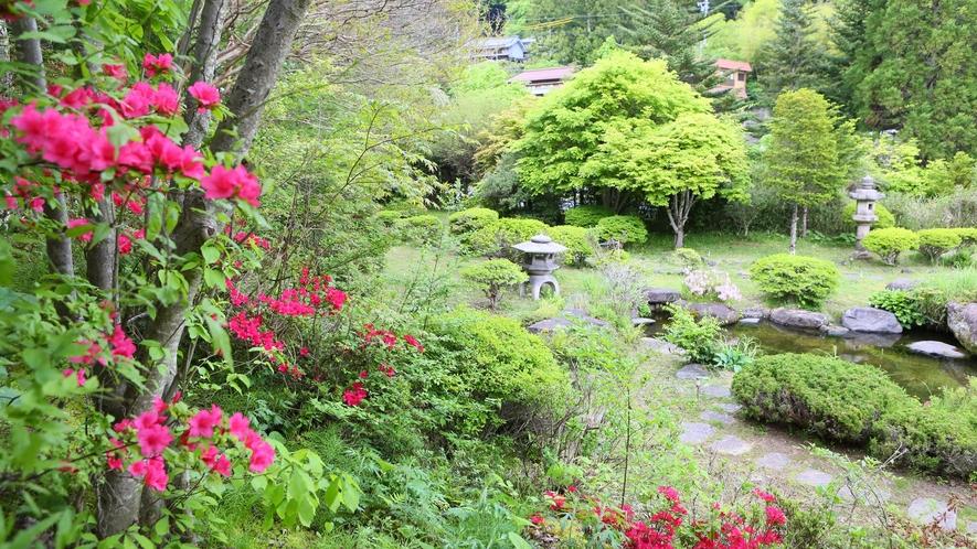 落ち着いた雰囲気の庭園