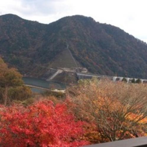 紅葉と温井ダム