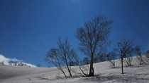 *【周辺景色】(冬)