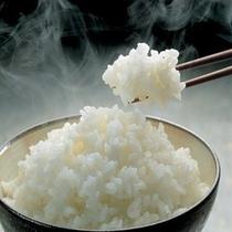 ★炊き立てご飯★朝はやっぱり白いご飯のコシヒカリ!