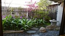 和室10畳のお庭