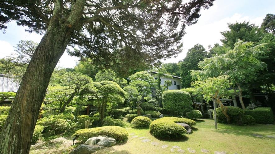 ■中庭/「旅籠」としての歴史とともに、当館が大切に育んできた宝のひとつです。