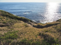 【周辺の見どころ】城ヶ島の海岸から見たきれいな海
