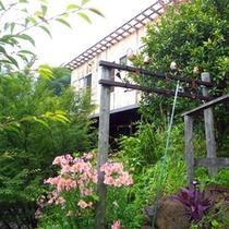 *春になると江の浦テラスの周りには、様々な花が咲きます。
