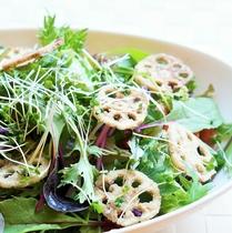 新鮮野菜のシャキシャキサラダ
