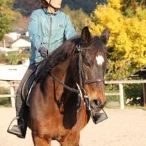 乗馬プラン2