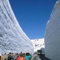 〜雪の大谷〜立山まではお車で約50分。