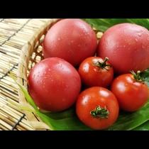 ■【南郷トマト】