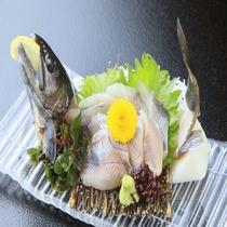 """■ギンヒカリ・雪魚・岩魚""""川魚三昧■"""