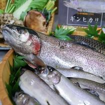 ギンヒカリ(群馬ブランドのニジマス)、岩魚など当館で使用している食材たち
