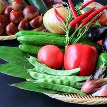 地元産や自家製の野菜をふんだんに使用しています♪