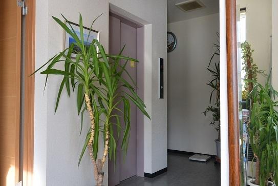 エレベーターIII