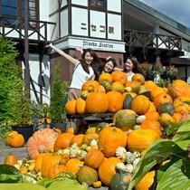 *ニセコ駅・秋イメージ/9~10月はハロウィンに向けて、大小さまざまなかぼちゃが出迎えてくれます。