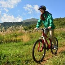 *ガイドと一緒にレンタルバイクでニセコの爽やかな森をサイクリングしませんか?