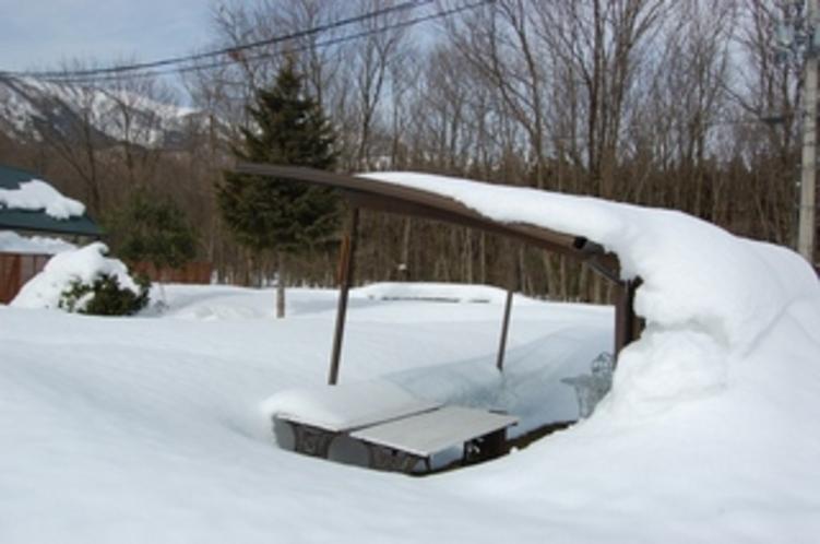 15 冬のドッグラン