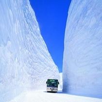 □立山黒部アルペンルート「雪の大谷」