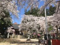 高森町の瑠璃寺