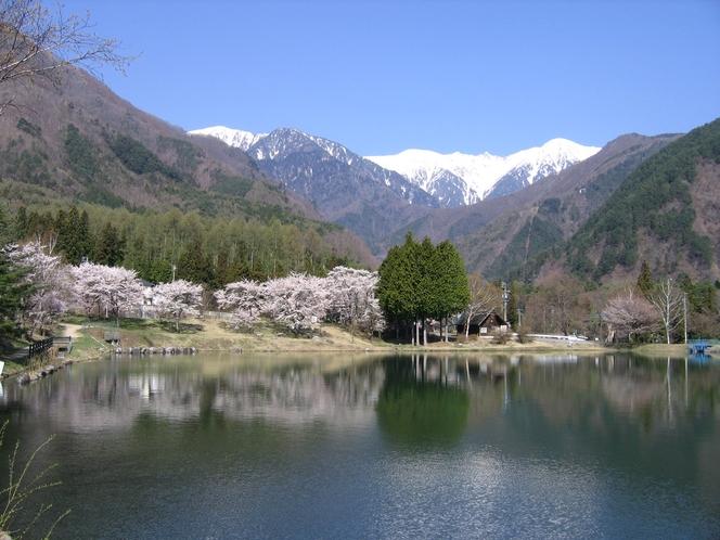 駒ヶ池(春)