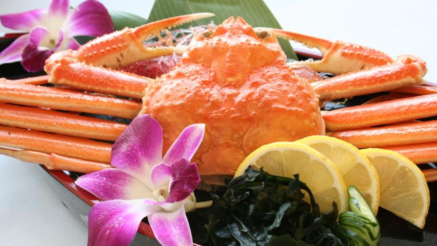 <おひとり様ずわい蟹まるごと一杯付>はまゆう会席+ずわい蟹付プラン《6月〜8月》