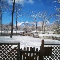 周辺_冬には雪が積もって一面銀世界!
