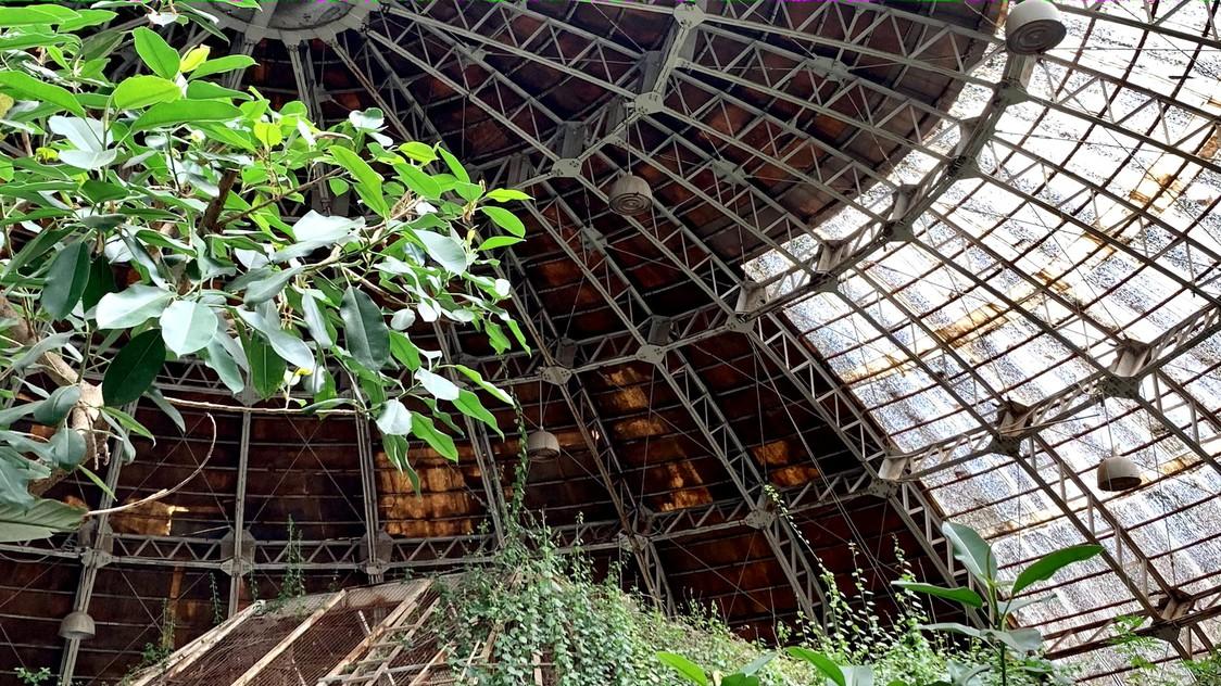 草津熱帯圏まで徒歩7分。熱帯大ドームの中はジャングルそのもの。