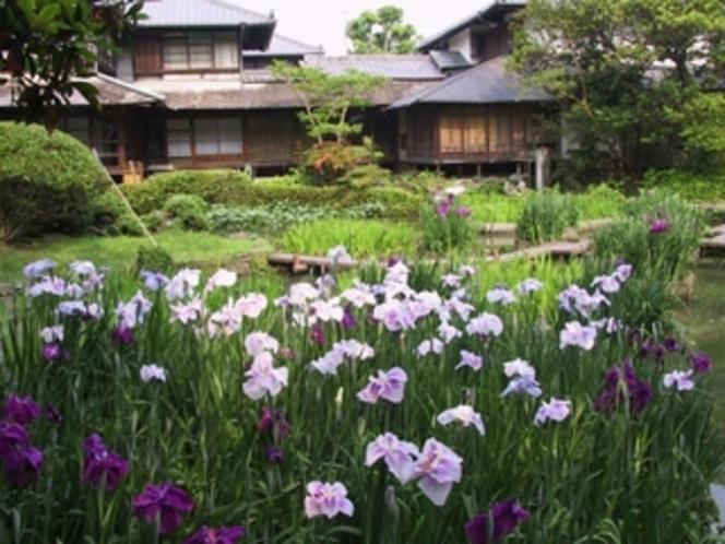 『松浜軒』後藩八代城主の松井直之公が生母のために建てた美しい庭園を備えた御茶屋。