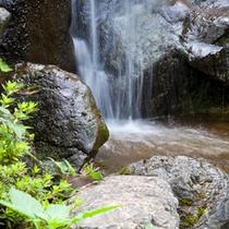 館内イメージ:滝