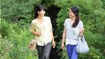 朝のお散歩。5月~11月の朝7時より朝のお散歩会を実施しております。遊歩道はいつでも自由に歩けます。