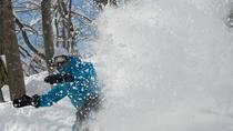 【冬】関温泉スキー場 ボード