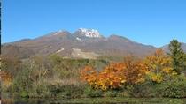 【秋】秋の妙高山。10月~11月上旬にかけ妙高では紅葉が見頃をむかえます
